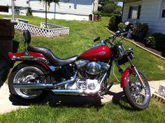 HARLEY DAVIDSON 2006 SOFTAIL STANDARD - 2006 Harley Davidson softail standard FXSTI,F... #ReferLocal