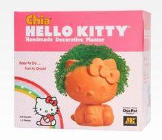 Hello Kitty Chia Pet!!  Ch.....Ch.... Ch.... CHIA!!