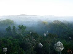 Segundo Lugar no Concurso de Ideias Nature Observatory of Amazonia (NOA) / Brasil