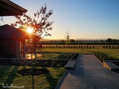 Pialligo Estate is just ten minutes from the centre of Canberra. Get married on the lawns overlooking the vines and then party on in the pavilions or in the marquee