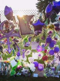 Prince's Paisley Park Home to Become a Museum