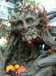 Tree man - if I could fall asleep on his lap, nestled in crisp leaves and gourds and fairytale pumpkins, I would stay there forever. ~ TheBlackPumpkin