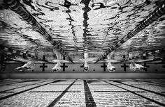 Photography Jobs Online - The Master of Sports Photography Job Hall More - If you want to enjoy the good life: making money in the comfort of your own home with just your camera and laptop, then this is for you! Michael Phelps, I Love Swimming, Swimming Pools, Fitness Workouts, Swimming Photography, Underwater Photography, Swim Mom, Competitive Swimming, Synchronized Swimming
