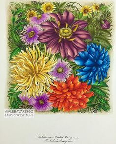 Inspirational Coloring Pages by @alebavaresco #leiladuly #floribunda #coloriage…