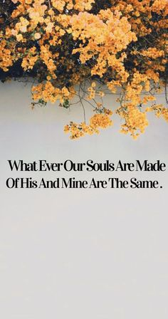 What ever our souls are made of his and mine are the same – ThePins Movie Quotes, True Quotes, Book Quotes, Live Wallpaper Iphone, Cute Wallpaper Backgrounds, Motivational Quotes Wallpaper, Wallpaper Quotes, Movie Wallpapers, Cute Wallpapers