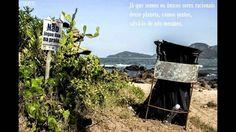 FCMFOTOS - Portfolio - Projeto Desplastifique a Natureza