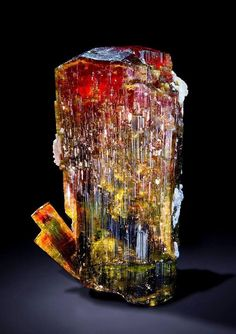 Amazing Geologist: This massy liddicoatite is a truly spectacular specimen. Ampanivana pegmatite, Antananarivo Province, Madagascar Size: 8 x x cm Credit: DI (FH) Rudolf Watzl Minerals And Gemstones, Rocks And Minerals, Rock Collection, Beautiful Rocks, Mineral Stone, Rocks And Gems, Healing Stones, Stones And Crystals, Gem Stones