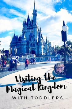 Tips & Tricks we learned taking our two Toddlers to The Magical Kingdom!
