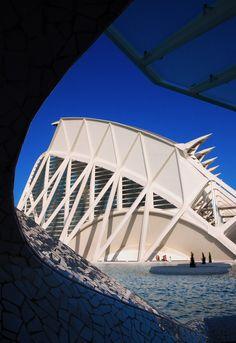 Santiago Calatrava - Museo de las Ciencias Príncipe Felipe. City of Arts and Sciences, Valencia Spain