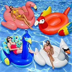 Swimline 4 Piece Peacock/White Swan/Golden Goose/Flamingo Float Set - Keep everyone at your next pool party entertained with the Swimline 4 Piece Peacock/White Swan/Golden Goose/Flamingo Float Set . These floats are lightweight,. Flamingo Float, Flamingo Pool, Popular Pool Floats, Inflatable Float, Inflatable Island, Pool Rafts, Pool Lounge, Pool Furniture, Cheap Furniture