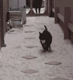 Hopscotch Kitty - so cute! You have to click on it to see her jump from stone to stone.