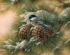 Chickadee and pinecones