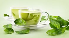 What is the best tea to drink for weight loss. Weight loss tea is a drink for enjoyed all over the world. Pour hot water over the tea leaves, dip in water Weight Loss Tea, Green Tea For Weight Loss, Best Weight Loss, Green Tea Diet, Best Green Tea, Green Teas, Te Verde Sencha, Pu Erh, Green Tea Benefits