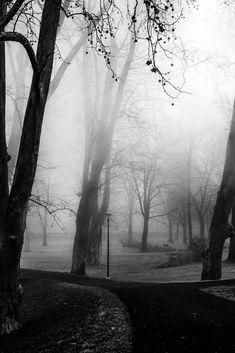 Nebulös war die Dunkelheit | Merna El-Mohasel War, Outdoor, Loneliness, Darkness, Love, Outdoors, Outdoor Games, The Great Outdoors