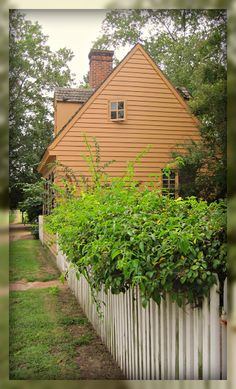 colonial williamsburg gates and fences | rain and cool weather have done wonders for some of the shrubs and ...