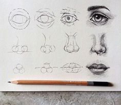 Anatomy Drawing Tutorial Eyes , nose and lips By taran Eye Drawing Tutorials, Sketches Tutorial, Drawing Techniques, Art Tutorials, Eye Tutorial, Drawing Tips, Drawing Ideas, Sketch Drawing, Drawing Style