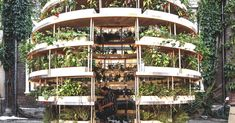 Ikea Lab Releases Free Plans For A Stunning Sustainable Garden Backyard Aquaponics, Hydroponic Gardening, Hydroponics, Organic Gardening, Aquaponics Fish, Urban Gardening, Indoor Gardening, Aquaponics System, Vertical Gardens