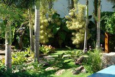 Os majestosos jardins de Marcelo Novaes