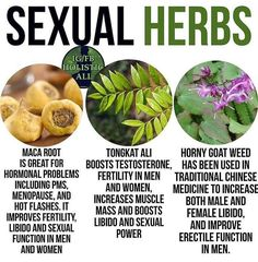 Wellness of Sexual health and wellness, points that females as well as guys must understand and also share issues Health Facts, Health And Nutrition, Health And Wellness, Health Tips, Health Fitness, Men Health, Health Trends, Health Quotes, Women's Health