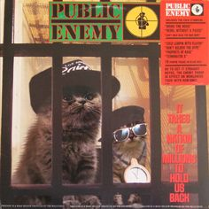 Public Kitteny - It Takes a Nation of Kittens to Hold Us Back