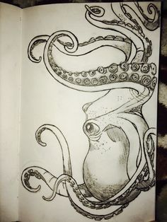 My octopus drawing by colette - Octopus Tattoo & Garden Pot Design & DIY Bathroom & Hairstyle For School & Ideas DIY Jewelry Octopus Drawing, Octopus Art, Octopus Sketch, Squid Drawing, Octopus Painting, Drawing Eyes, Animal Drawings, Cool Drawings, Sketch Style