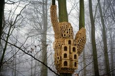"""Birds that are open to changing their wild ways might be convinced to try out the innovative bird-housing concept developed by the artists at London Fieldworks. The """"Spontaneous City in the Tree of Heaven"""""""