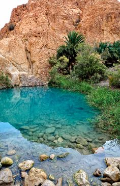 Chebika Oasis, Tunisia. Despite the uphill trek it was great to cool down paddling in the pools. And completely deserted. Amazing!