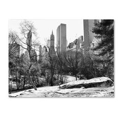 CATeyes 'Central Park' Canvas Art