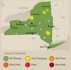 US Fall Foliage Map At Weathercom Fallfoliage Fall Foliage - Us fall foliage map