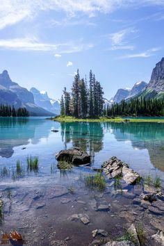 There are so many things to do in Jasper National Park, but if this is your first road trip to the park it can be a little overwhelming. Don't worry, this list includes all the things you can't miss while on your vacation, plus a bunch of information to help you make your way around the park. Whether or not you like hiking and camping this list will make it easy to have a fun adventure. Canada National Parks, Jasper National Park, Banff National Park, Alberta Travel, Forest View, Nature Activities, Best Hikes, Beautiful Landscapes, Beautiful Places