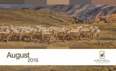 Michell Calendar- Andean Heritage Colour Inspiration - August 2016 #alpaca #alpacayarns #finestperuvianalpaca
