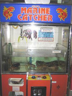 Crab vending machine in China