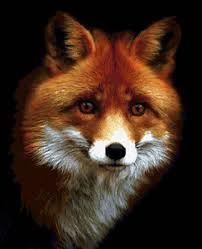 Image result for вышивка крестом лисы
