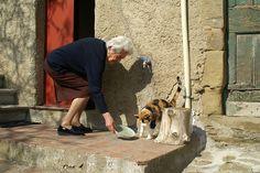 Nonna Feeding Her Cat in Cortona, Italy