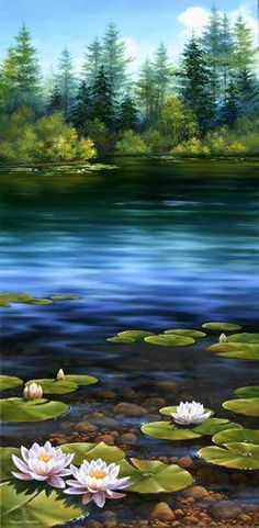 Lilies Pond, Original Oil Landscape Painting by Varvara Harmon - Maine Landscape, Seascape and Still Life Artist Pictures To Paint, Nature Pictures, Beautiful Paintings, Beautiful Landscapes, Landscape Art, Landscape Paintings, Still Life Artists, Lily Pond, Art Oil