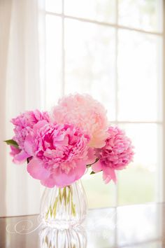Such pretty pink peonies!