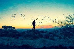 Evanescência  Me desfaço em pássaros  Neste passo cravejado em alturas  Sou onda  Sou queda  Sou espuma  Desenlaço espaços  E desapareço abraçando o mundo.  -  Evanescence  I disappear into birds  In this step studded in heights  I'm wave  I'm fall  I'm foam  I unravel spaces  And fadeaway embracing the world.  -  www.sonhonosonho.wordpress.com  www.instagram.com/jeronimo_dreams/  www.facebook.com/jeronimodreams  Words by Jeronimo Sanz