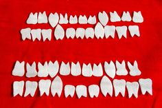 Amalie Atkins, 'Bear Teeth,' 2008, dc3 Art Projects