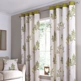 Lounge? Green Pennine Curtain Collection