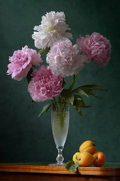 http://pixels.com/featured/pink-peonies-and-apricots-nikolay-panov.html classic floral still life photography with simple composition of lush bouquet of colorful peonies in small glass vase and few fresh apricots in daylight in summer