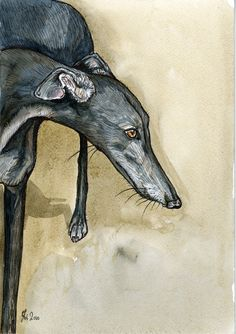 Whatever - Greyhound Dog Print 7 x 5 inch, via Etsy.