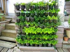 Researching: DIY vertical garden ideas that actually look good ...