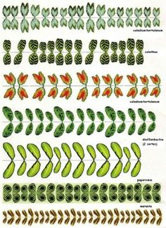 Printable plant leaves   Miniature