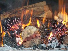 Readying Your Wood Fire Oven For Bread Baking