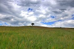 Nature around Colcello Le Marche