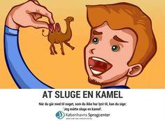 At sluge en kamel ordsprog Københavns Sprogcenter