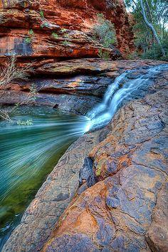'Garden Of Eden', Warrtarka National Park (Kings Canyon), Nothern Territory, Australia.