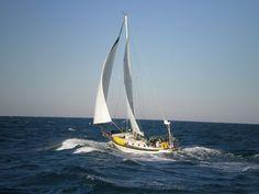 9 Best Used Sailboats Ocean Sailing, Sailing Catamaran, Sailing Ships, Sailboat Restoration, Liveaboard Sailboat, Used Sailboats, Sailboat Living, Boat Interior, Sailing Outfit