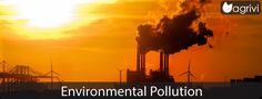 Environmental Pollution | Agrivi