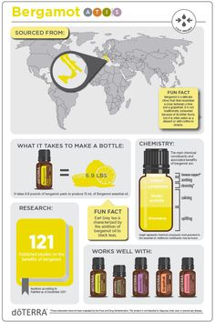 doTERRA Bergamot Essential Oil Infographic - Primary Benefits Calming and soothing aroma Provides skin purifying benefits Frequently used in mass - Essential Oil Safety, Essential Oil Companies, What Are Essential Oils, Essential Oils Guide, Essential Oil Blends, Bergamot Essential Oil, Doterra Essential Oils, Aromatherapy, Products